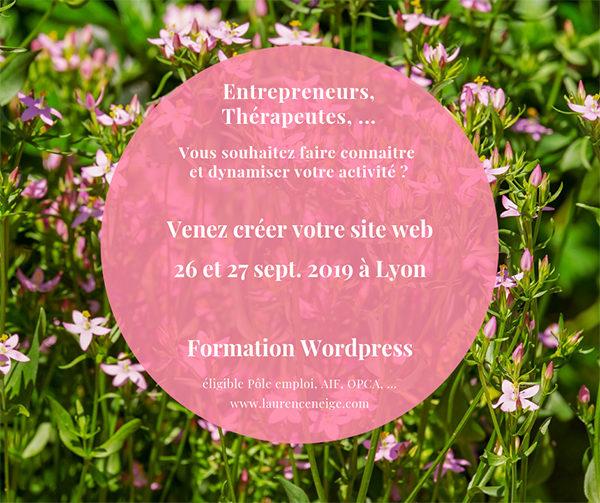 Formation WordPress éligible Pôle Emploi, AIF, OPCA, à Lyon (69) septembre 2019