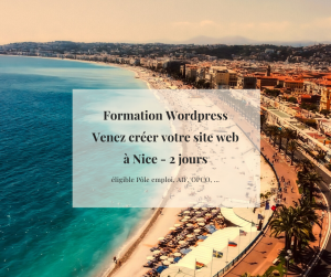 Formations WordPress éligible Pôle Emploi AIF OPCA OPCO à Nice 06