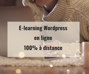 E-learning WordPress formation en ligne 100% à distance