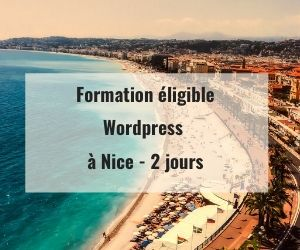 Formations WordPress éligible Pôle Emploi AIF OPCO à Nice 06