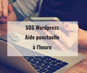 sos wordpress aide à l'heure forfait horaire